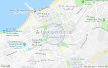 Asafra apartment is up for rent - Alexandria