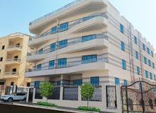 بالشروق من المالك مباشر شقة 176 متر 3نوم و 2 حمام و مطبخ و ريسبشن و بلكونه