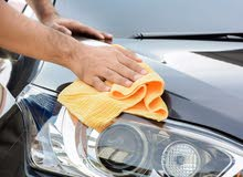 Vehicle cleaning expert
