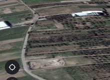 أرض للبيع بمساحة 845 متر مربع