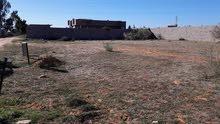 قطعة ارض 1000 متر في منطقة خلة النور للبيع تقع في منطقة قريبة جدا جدا ع رئيسي