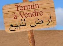 ارض للبيع في عجمان منطقه الرميله