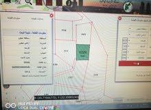 كفرنجه الحي الشرقي بجانب مركز شابات كفرنجه