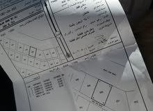 أرض 600م للبيع في سيح العلا  2
