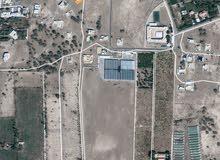 ارض سكني تجاري للبيع بولاية بركاء بمنطقة البلة