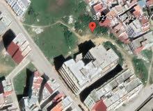 بقعة أرضية للبيع في مدينة أصيلا ( السقايا)