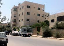 طلعة حديقة الملكه رانيا من إتجاه محطة الفنار شارع الجسور العشره