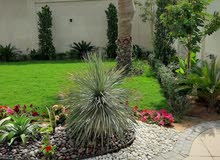 0559210936 NEW INDOOR PLANTS AND LANDSCAPING WORK L.L.C