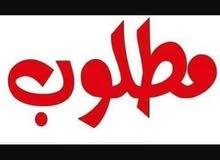 مطلوب راعي غنم مستعجل