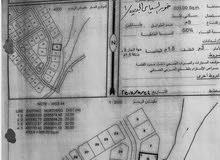 ارض صف أول من البحر في صُحار ( عُمان )