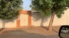 Al Buraimi neighborhood Buraimi city - 250 sqm house for sale