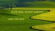 قطعة ارض مميزه للبيع في الاردن - عمان - دابوق