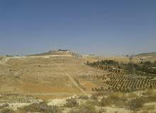 ارض 800م في شفا بدران / المكمان
