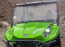 Teryx 800CC  2 Seater