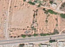 قطعة ارض 840 متر تاجوراء كوبري الشاحنات سيدي خليفة