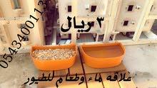 سقايات (سقي الماء) للطيور والحيوانات