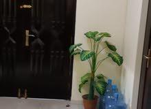 Best property you can find! villa house for rent in Al Iskan neighborhood