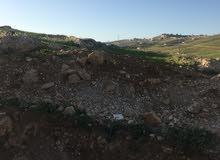 قطعة ارض للبيع في شفا بدران ملاصق حوض عيون الذيب