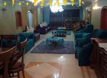 Apartment consisting of 3 Bedrooms Rooms for rent
