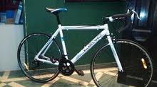 leno y8 road bike