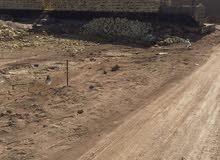قطعتي ارض زراعي متجاورة التنومة كوت الكوام