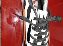 مطلوب شروات رجالي ولادي احذية صيني بواقي حاويات نمر مكسرة بواقي محلات