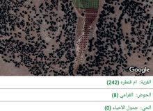 #أرض مميزة للبيع 4950 m أم قنطرة مناسبة لمزرعة نموذجية