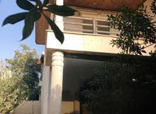 5 rooms Villa palace for rent in Irbid