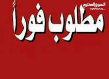 مطلوب طيره حلبيه المانيه نخب  او نوريت بواز نخب بسعر معقول