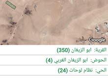 قطع أراضي سكني مساحات 6 دونم في الزرقاء السخنه ابو الزيغان الغربي