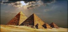 تاشيرة المصرية مستعجلة وعادية