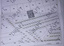 قطعة ارض للبيع سكني مشترك لشخصين ( ميري ) للأستثمار موقع مميز