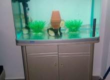 حوض سمك اجنبي مع خزانته للبيع