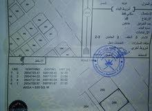 ارض للبيع نخل_الطو