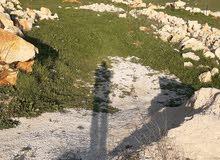 ارض للبيع في راشيا الوادي البقاع الغربي مميزة جدا بسعر مغر صالحة للعمار