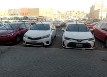 Corolla 2015 and 2016 rent 100 k.d