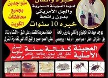 مكافحة حشرات الكويت مكافحة الحشرات والقوراض الصراصير بق الفراش النمل جميع أنواع