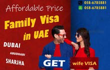 QUICK AND TRUSTWORTHY PRO SERVICES FAMILY VISA