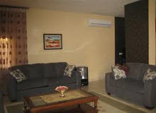 from owner furnished apartment at khalda for rent