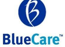 blue care clean