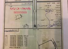 أرض زراعية/شاليه/عزبة في ولاية بهلاء - فل ( الحبي-المعمور-بسياء)