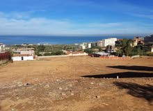 ارض للبيع في تيبازة