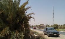 10دونم ارض صناعيةاقنصاديةسكنية ملك صرف لقطةعل النبليط ومقابل قناة كربلاءالفضائيةمباشرة