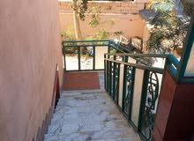شقة مستقله الدور الأول بالقراج الخاص شارع الظل للايجار
