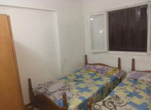 apartment area 80 sqm for rent