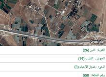 طريق المطار -خلف جامعه الاسراء ب6كم -اللبن -حوض القليب -على شارعين من المالك مباشره قرب الطنيب