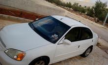 عمان. شفا بدران