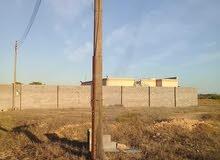 قطعة أرض بالدافنية مساحتها 800 متر مربع