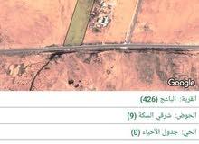 ارض للبيع بمحافظة المفرق الباعج  5500 للدونم