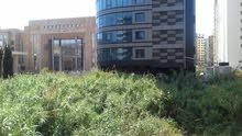 للبيع أرض في لبنان الشمالي طرابلس الضم والفرز تجاري او سكني